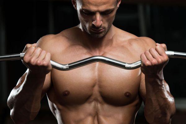 Consejos para desarrollar musculo
